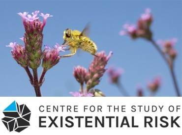 CSER's Response to the IPBES' 2019 Global Assessment Report on Biodiversity and Ecosystem Services